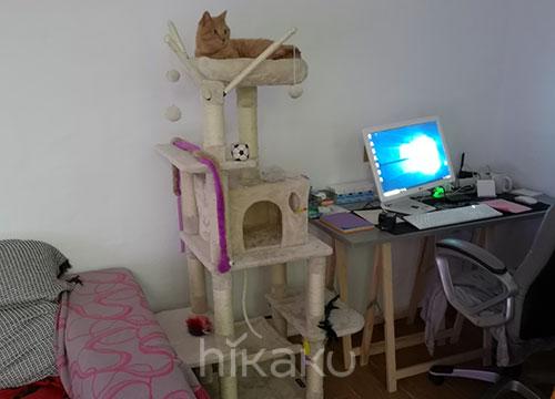 Arboles rascadores para gatos