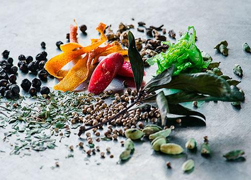 Principales botanicos para Gin Tonic