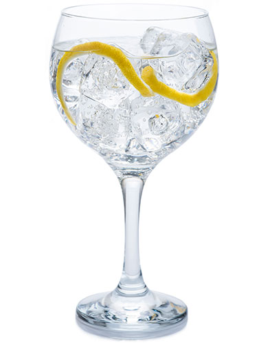 El Mejor Gin Tonic